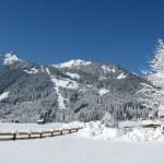 Winter 2012a