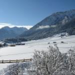 Winter 2012b